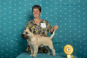 Vale of Atholl's Captain Celtic (Cairn Terrier)