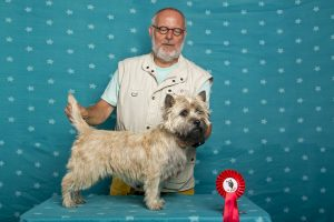 Vale of Atholl's Earl of Mansfield (Cairn Terrier)